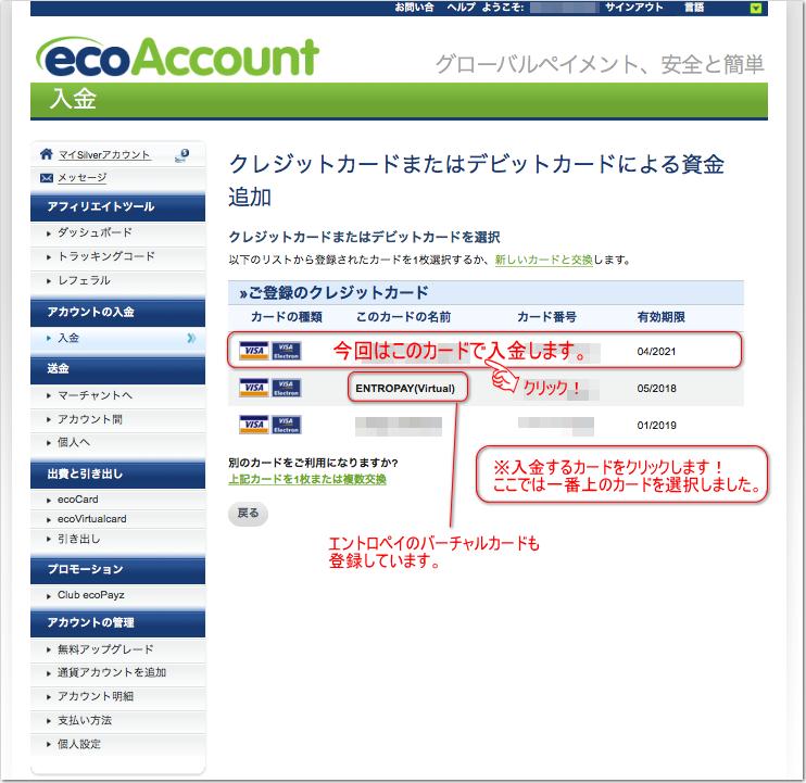 エコペイズ(ecoPayz)に入金002
