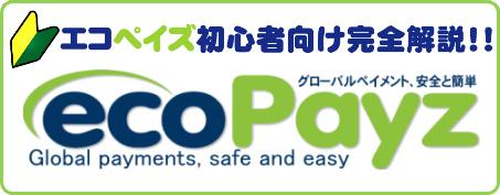 エコペイズ(ecoPayz)のバナー